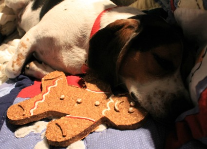 Wilson & Gingerbread Man