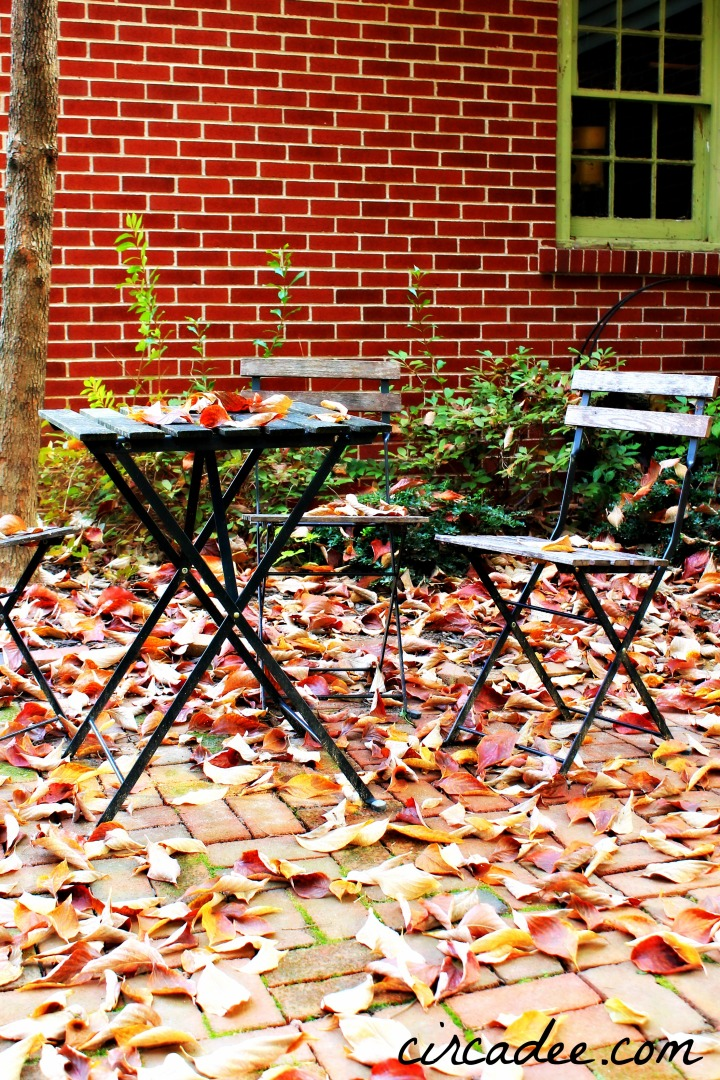 fall bistro table