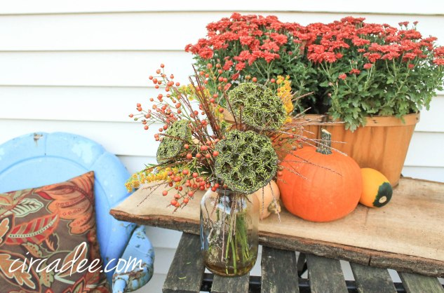 natural fall vignette