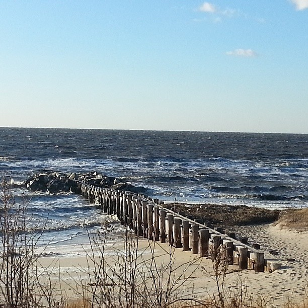 Winter in Cape May 4