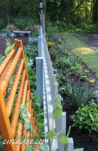 vegetable and perennial border garden