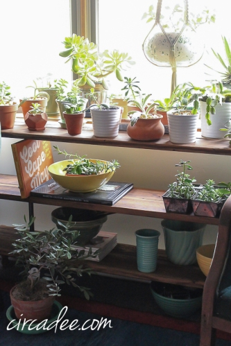 simple DIY: reclaimed wood + pipe plant stand-