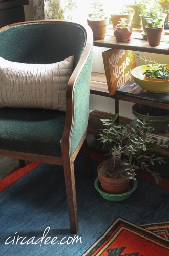 terra cotta & olive, mohair chair