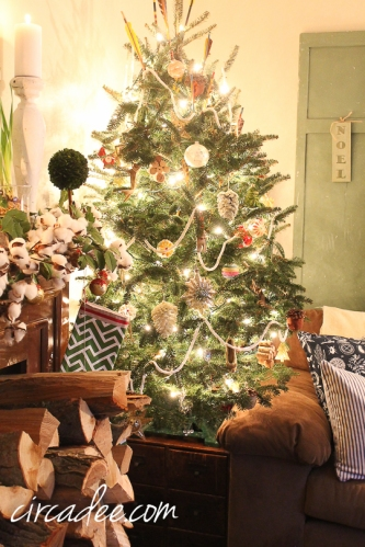 Christmas 2014-5331