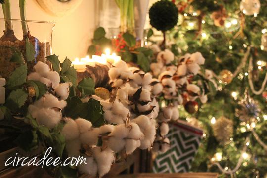 Christmas 2014-5334
