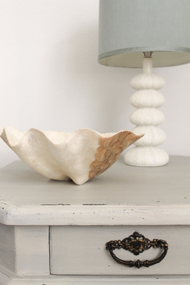 pedestal table + shells