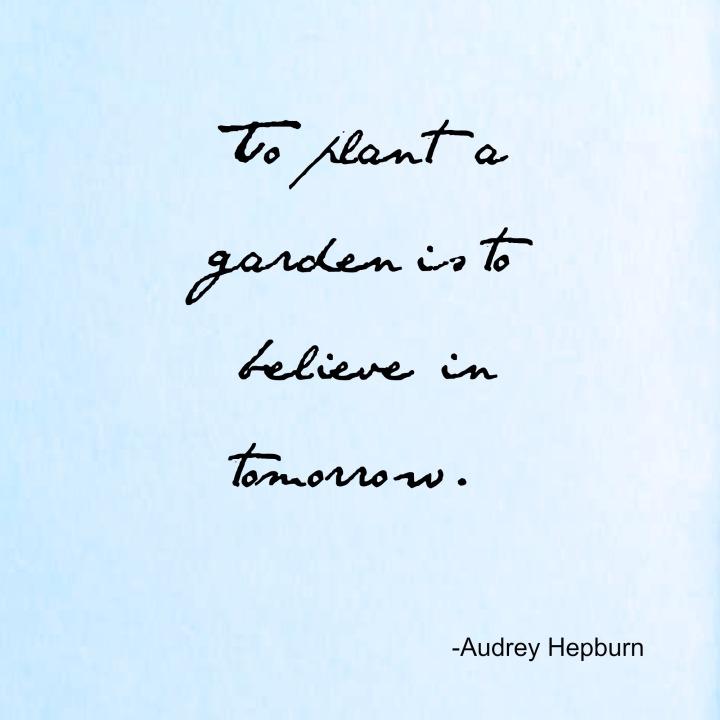to plant a garden...