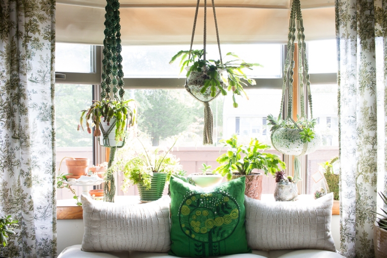 macrame jungalow plants-16-623